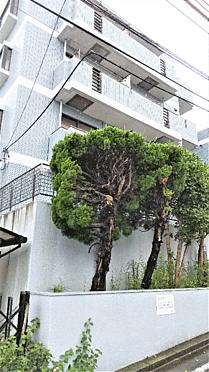マンション(建物一部)-横浜市磯子区洋光台2丁目 外観