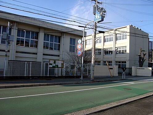 土地-神戸市垂水区西舞子4丁目 神戸市立舞子小学校