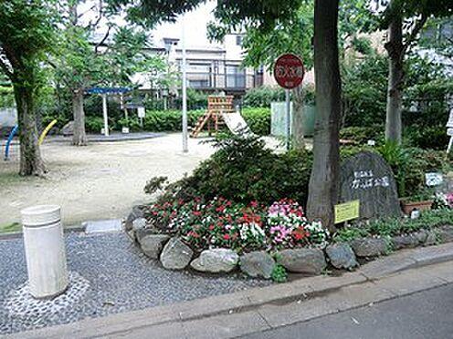 アパート-杉並区堀ノ内3丁目 かっぱ公園