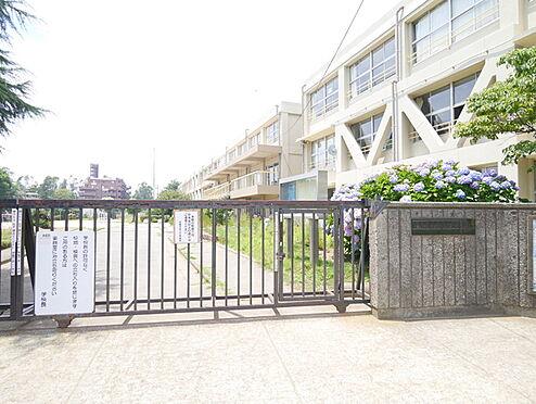 区分マンション-松戸市常盤平5丁目 松戸市立常盤平第二小学校まで797m