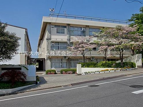 マンション(建物全部)-松戸市東平賀 松戸市立根木内中学校まで1542m