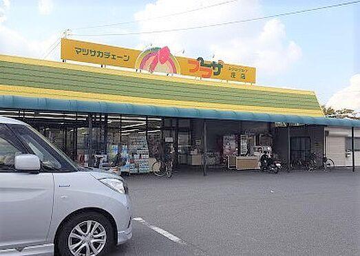 建物全部その他-倉敷市庄新町 マツサカプラザ庄店 徒歩 約36分(約2860m)
