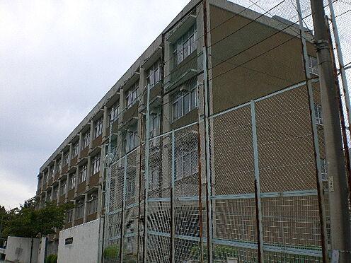 新築一戸建て-神戸市北区緑町3丁目 神戸市立甲緑小学校