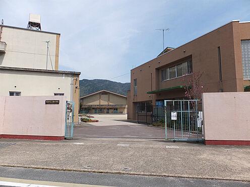 建物全部その他-京都市山科区勧修寺平田町 小野小学校 徒歩 約5分(約330m)