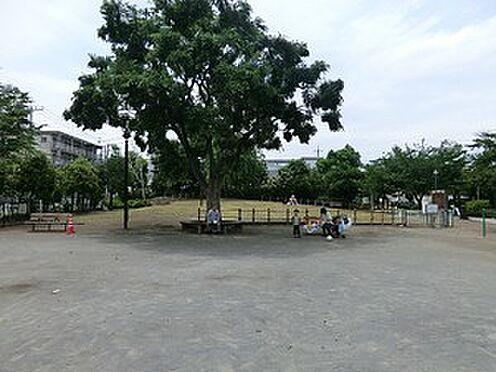 マンション(建物全部)-世田谷区池尻4丁目 周辺環境:代沢せせらぎ公園