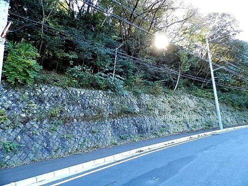 土地-熱海市泉元宮上分 既存擁壁のうえの部分が対象地です。