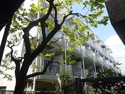 マンション(建物一部)-世田谷区上北沢5丁目 バルコニー(東)面のマンション画像