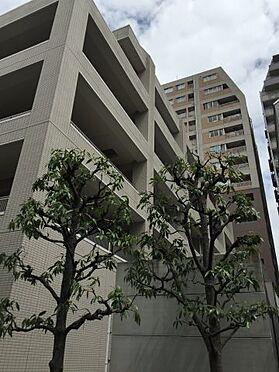 マンション(建物一部)-文京区本駒込1丁目 外観パース