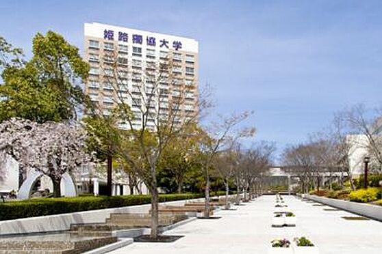 マンション(建物一部)-姫路市北平野6丁目 姫路獨協大学