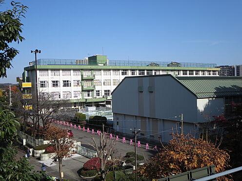 区分マンション-八王子市南大沢3丁目 八王子市立柏木小学校(649m)