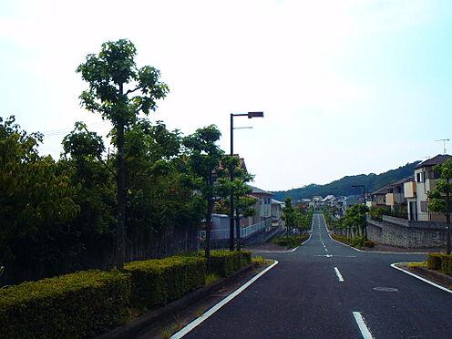 土地-岩出市桜台 前面道路含む現地