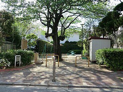 マンション(建物全部)-目黒区柿の木坂2丁目 周辺環境:曽根児童遊園