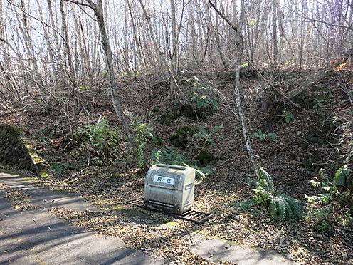 土地-北佐久郡軽井沢町大字長倉鶴溜 お隣にはゴミ捨て場もあり便利です。