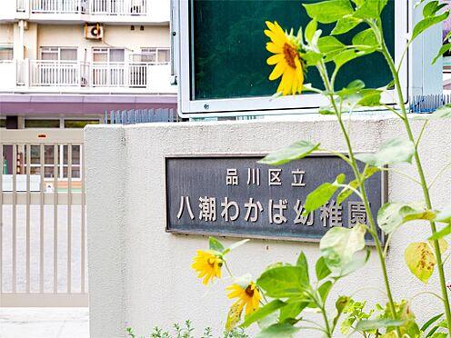 中古マンション-品川区八潮5丁目 八潮わかば幼稚園(212m)