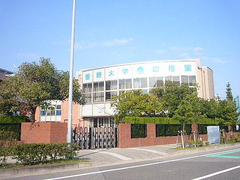 中古マンション-浦安市日の出2丁目 聖徳大学付属浦安幼稚園(約1050m)