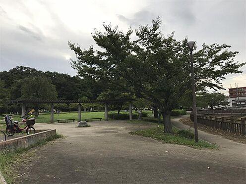 新築一戸建て-さいたま市緑区松木3丁目 井沼方公園(3160m)