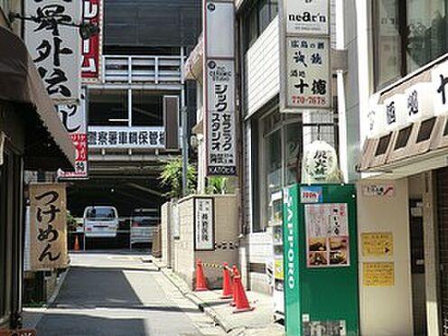 マンション(建物一部)-渋谷区神山町 長岩医院