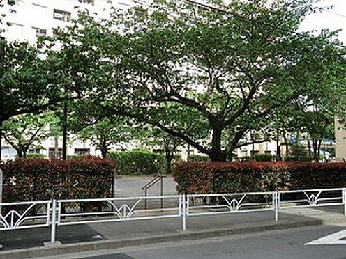 マンション(建物一部)-港区西麻布4丁目 広尾公園