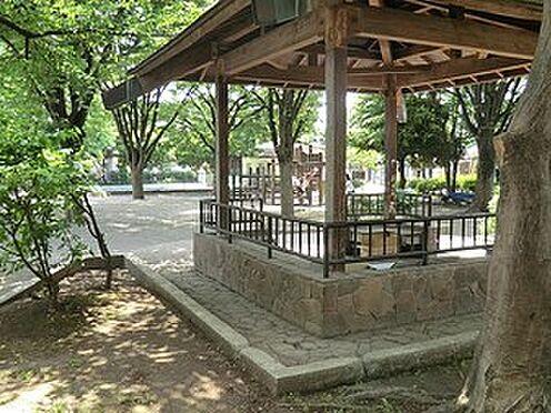 アパート-中野区南台3丁目 周辺環境:南台公園