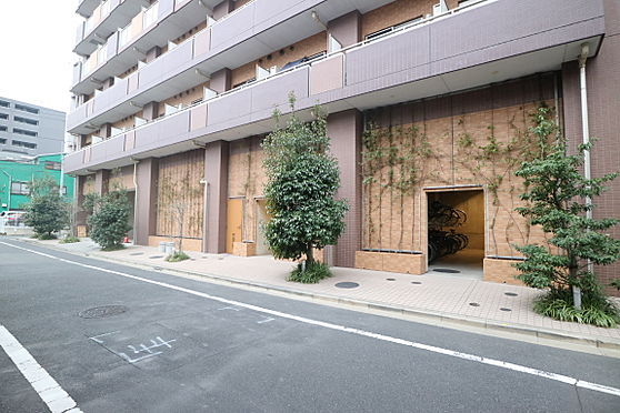 区分マンション-台東区日本堤2丁目 前面道路 敷地内の植栽が安らぎを与えてくれます。