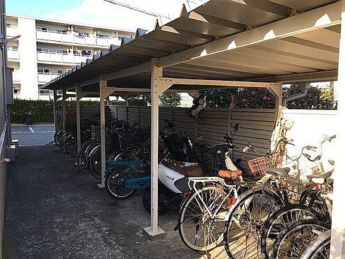 マンション(建物一部)-神戸市須磨区菅の台2丁目 屋根付きの駐輪スペースも完備