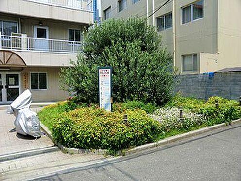 建物全部その他-渋谷区代々木4丁目 代々木みどり公園