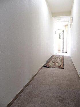 中古マンション-多摩市豊ヶ丘3丁目 その他内観:廊下部分のお写真です。カーペットにより大切に使用されていることが分かります。