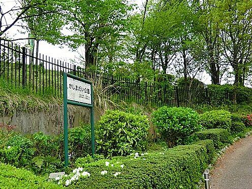 マンション(建物一部)-日野市南平1丁目 かしまだい公園まで600m