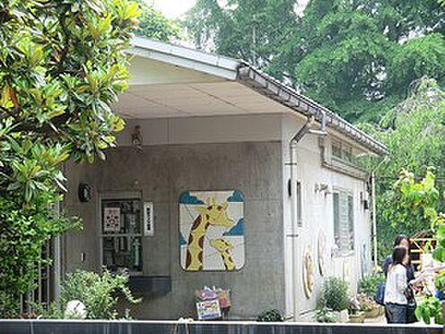 アパート-渋谷区西原3丁目 福田幼稚園