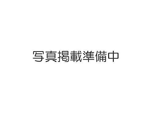 アパート-水戸市東桜川 外観