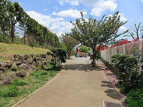アパート-中野区江古田2丁目 周辺環境:本多山公園