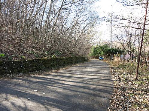 土地-北佐久郡軽井沢町大字長倉鶴溜 広い道路に加え、管理会社がしっかり除雪もしてくれますので安心です。