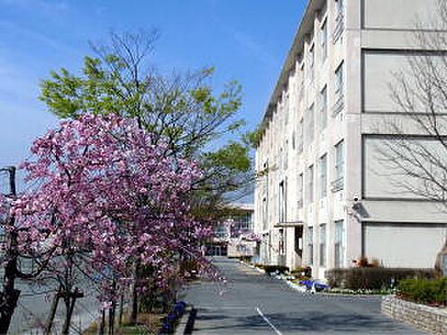 中古マンション-刈谷市富士見町5丁目 衣浦小学校 703m 徒歩約9分