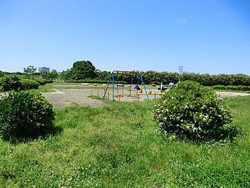 アパート-世田谷区玉堤1丁目 周辺環境:多摩川玉川公園
