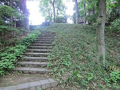 マンション(建物全部)-世田谷区上野毛2丁目 等々力渓谷公園
