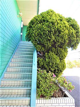 アパート-江戸川区篠崎町1丁目 外観