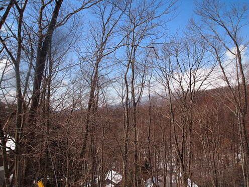 土地-北佐久郡軽井沢町大字長倉鶴溜 冬には浅間山を夏には緑をお楽しみください。