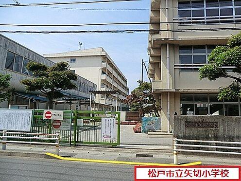 マンション(建物全部)-松戸市中矢切 松戸市立矢切小学校まで113m、松戸市立矢切小学校
