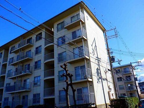 マンション(建物一部)-阪南市貝掛 間取り