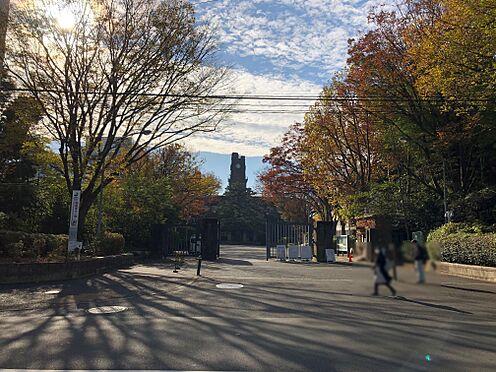中古マンション-目黒区駒場4丁目 東京大学駒場キャンパス 徒歩1分 約80m