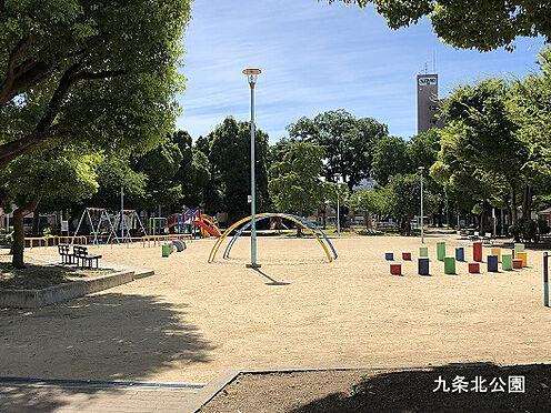 マンション(建物全部)-大阪市西区境川2丁目 九条北公園