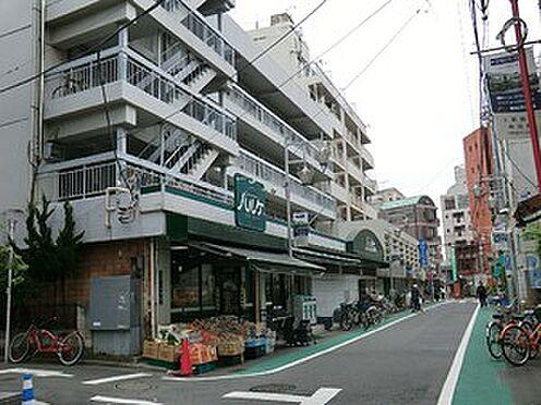 アパート-渋谷区西原3丁目 周辺環境:パルケミオ上原店