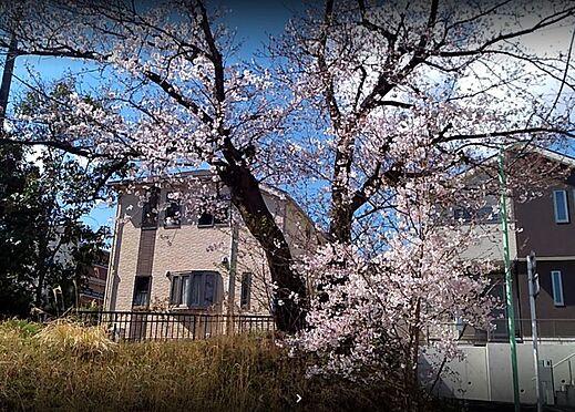 戸建賃貸-名古屋市緑区鳴丘2丁目 アクセントクロスのカラー見本です。沢山のサンプルからお好みの1枚を見つけてください。