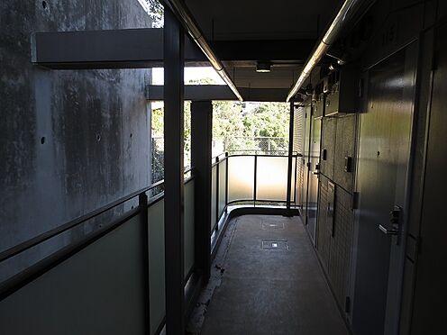 マンション(建物一部)-北九州市八幡西区折尾3丁目 玄関