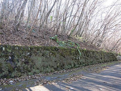 土地-北佐久郡軽井沢町大字長倉鶴溜 苔むした浅間石の石積みが別荘地の歴史を感じさせます。