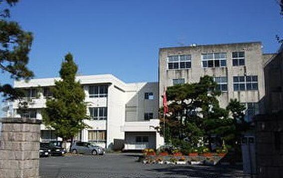 アパート-新発田市新栄町1丁目 新発田市立猿橋中学校(1218m)