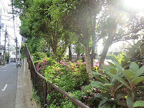 マンション(建物全部)-新宿区中落合2丁目 西池袋第二公園