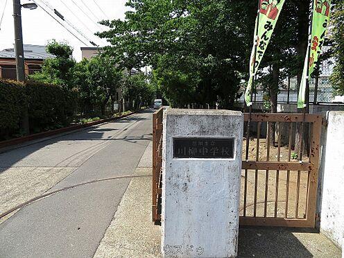 一棟マンション-草加市青柳3丁目 川柳中学校 徒歩 約10分(約800m)