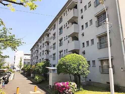 マンション(建物一部)-堺市北区東浅香山町3丁 その他