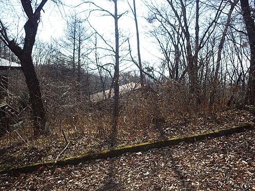 土地-北佐久郡軽井沢町大字峠町 緑あふれる環境にマイナスイオンたっぷりです。